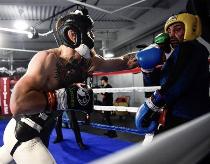 Knockdown or Pushdown, Paulie Malignaggi is Giving Conor McGregor a Boost